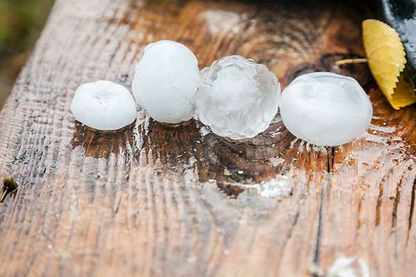 Indianapolis Hail Storm damages roofs, showing large hail on board