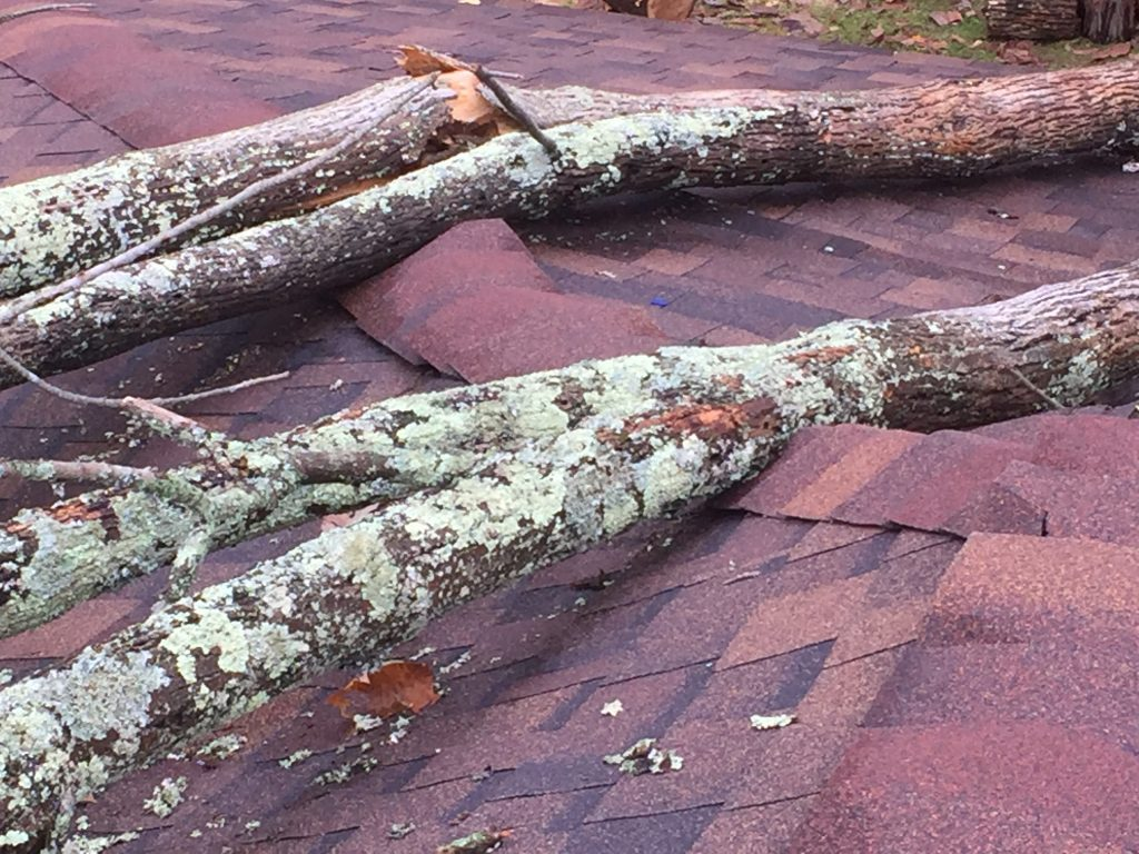 High winds, tree fell on roof damaging it in Central Ohio
